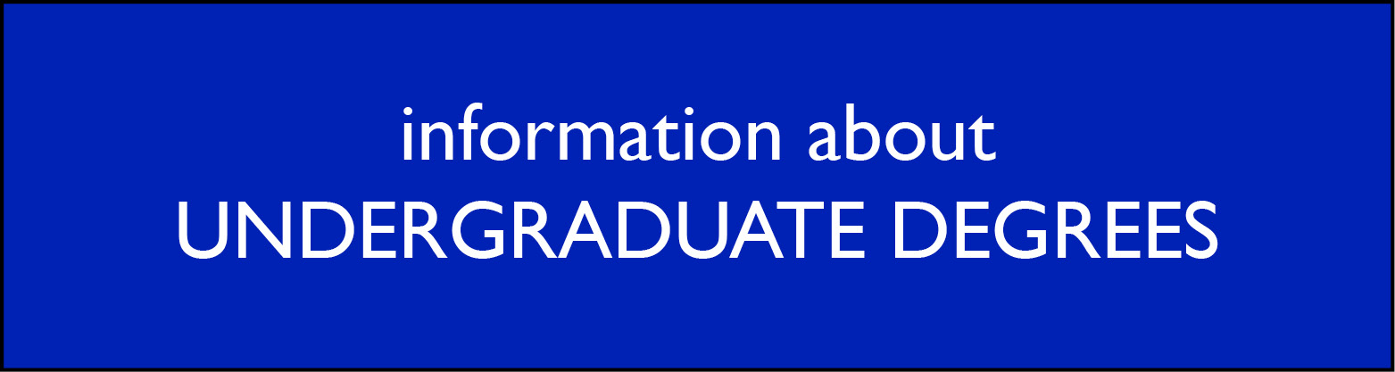 information about Undergraduate Degrees